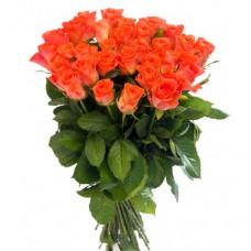21 коралловая роза