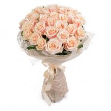 31 кремова роза