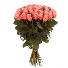 31 коралловая роза