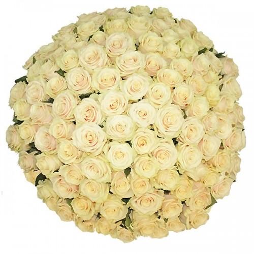 Белая дача цветы купить
