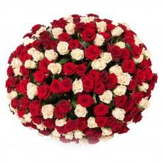 Букет из 251 розы