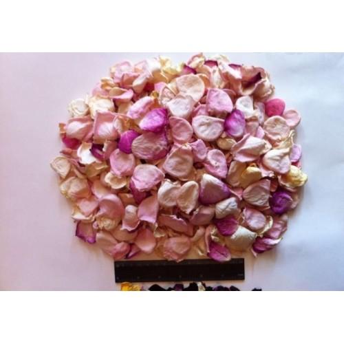 Купить сухие цветы гибискуса