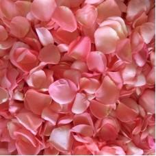 Свежие лепестки роз розовые