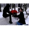 51 роза - способ выразить теплые чувства