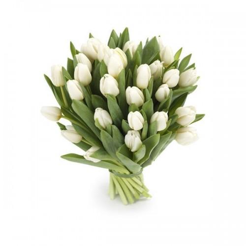 4ac9cbbd2b9 25 тюльпанов. Купить букет из 25 тюльпанов