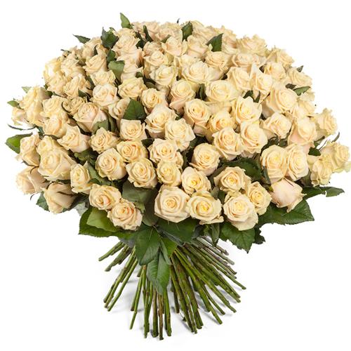 101 роза Талея